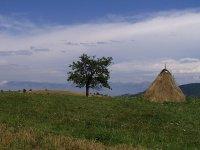 krajina Banátu